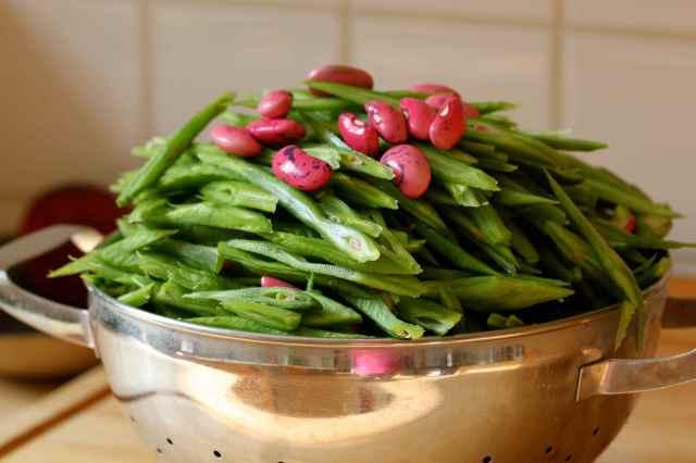 runner beans 7-9 1
