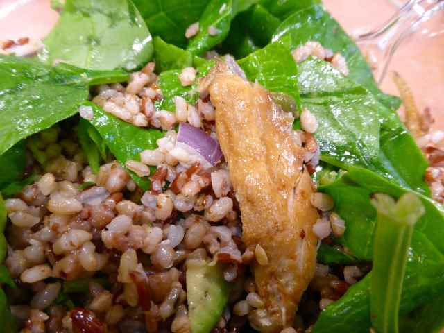 mackerel salad 22-10-14