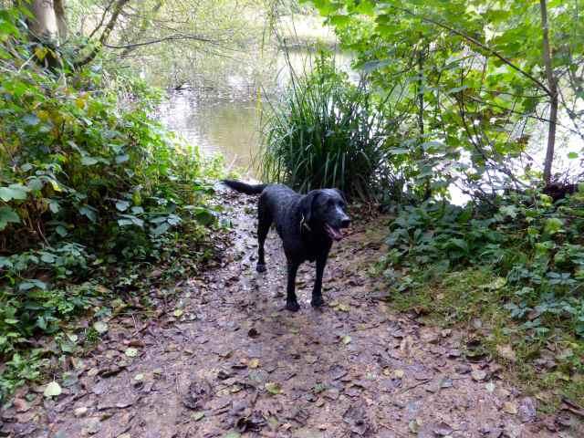 Milton at lake 1
