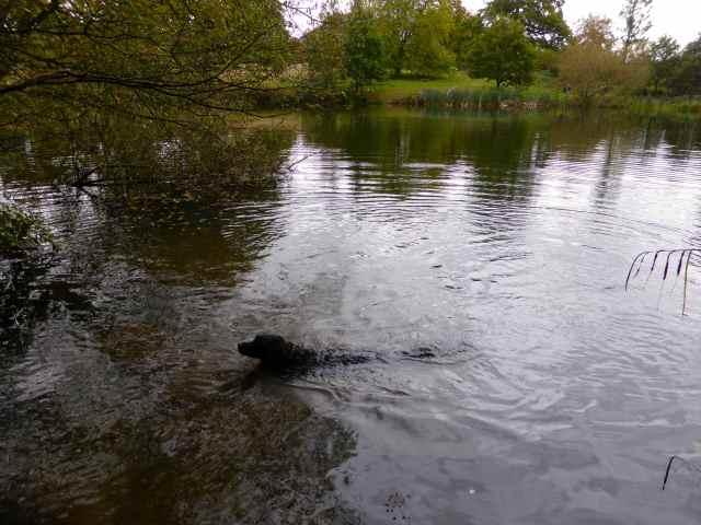Milton at lake 3