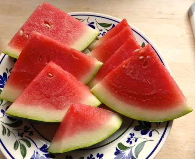 Watermelon 8-11-14