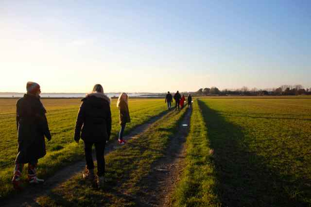 walking near Chichester
