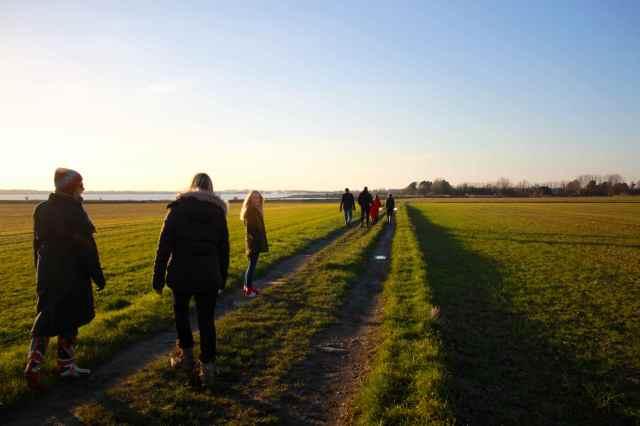 walking near Chichester