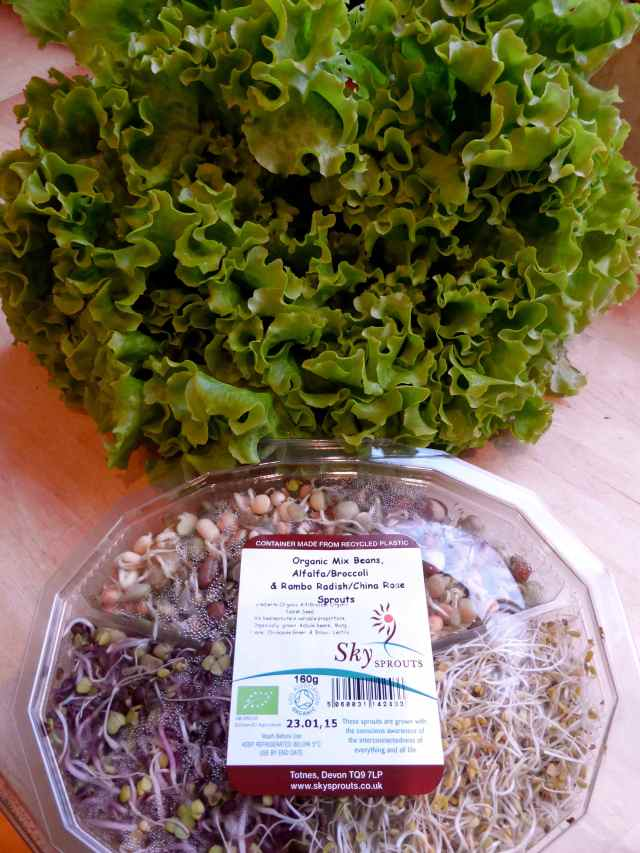 lettuce and sprouts