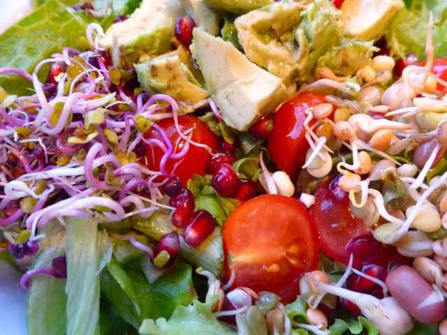 salad 15-1-15 1