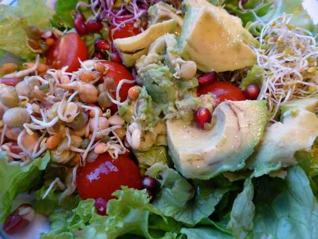 salad 15-1-15 2