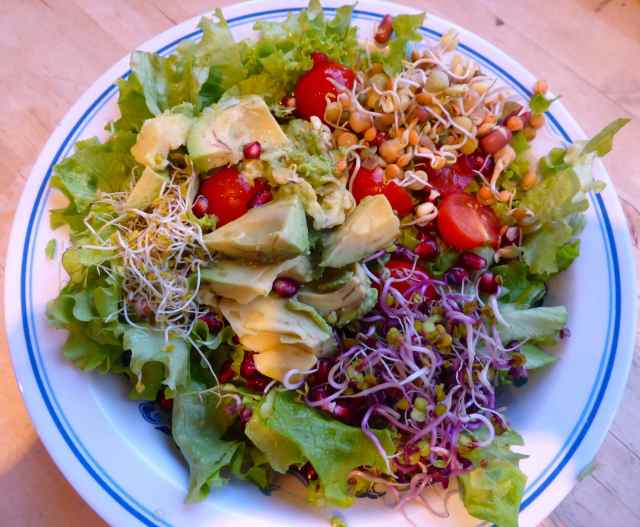salad 15-1-15 3