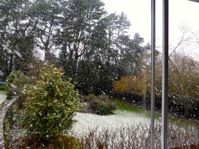 snow Feb 2015