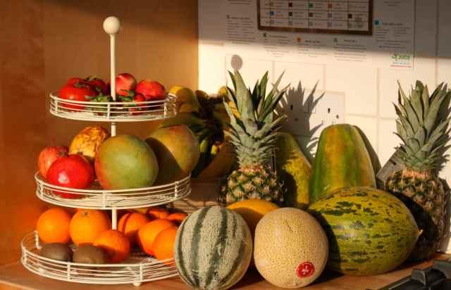 fruit in sunshine
