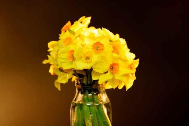 Spring Flowers in bottle