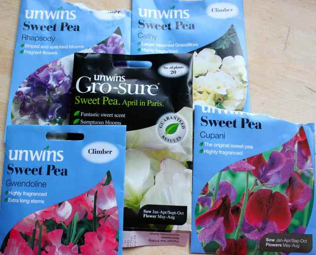 sweet pea packets