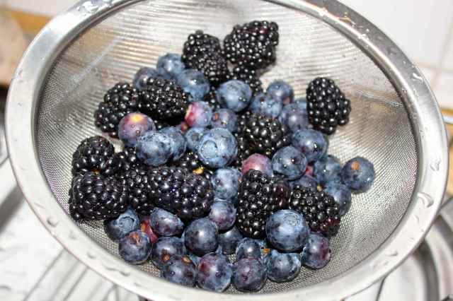 blue and black berries