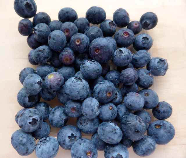 blueberries 9-4-15