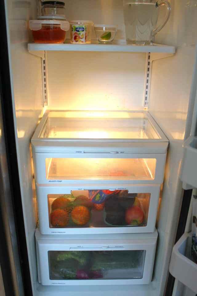 bottom half fridge