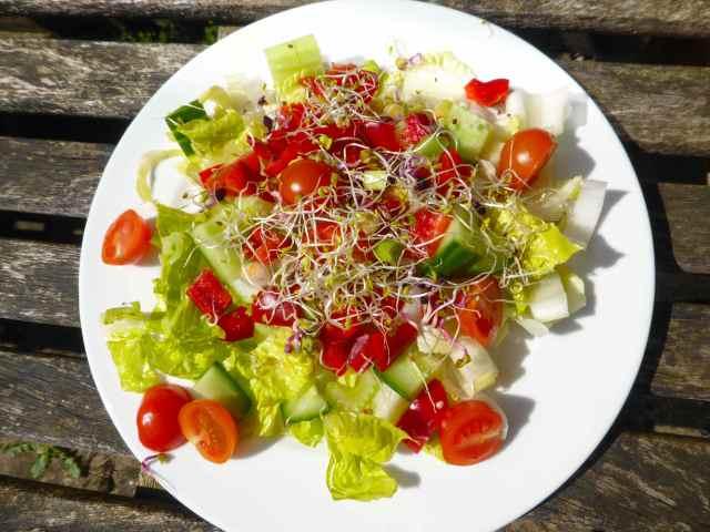 salad 17-4-15