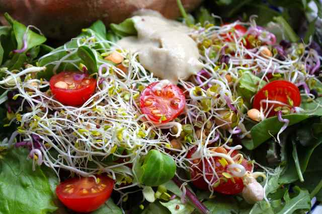 salad and sprouts