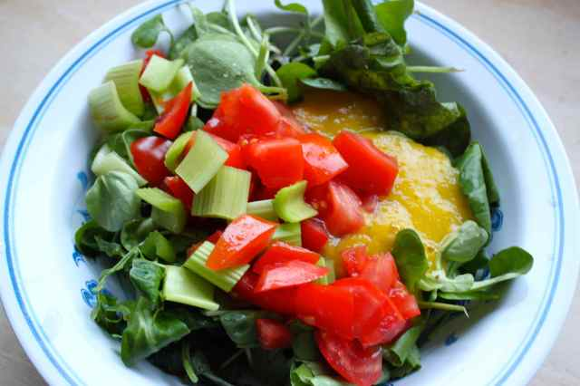 salad with mango