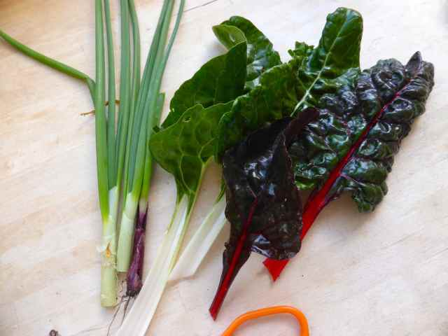 swiss chard and spring onions