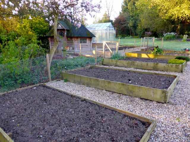 veg garden 04 2015