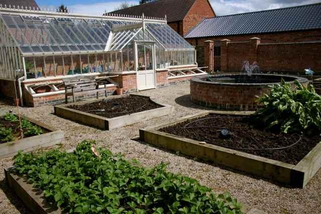 BJ veg garden