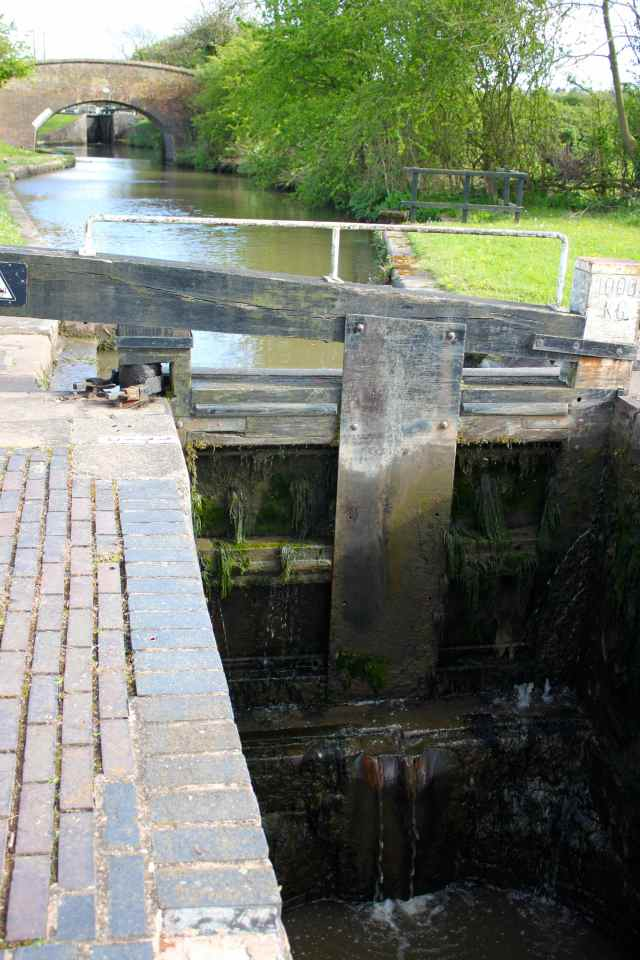 canal walk 12