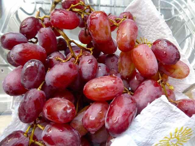 grapes 13-5
