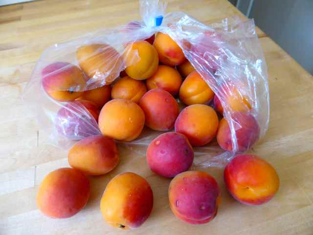 apricots 27-6