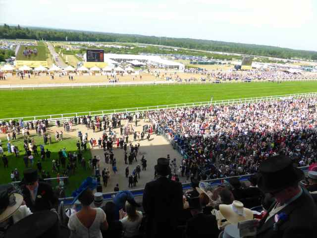 Ascot stands 2