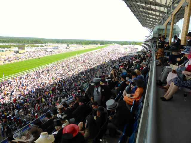 Ascot stands