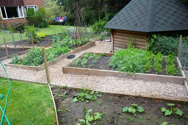 garden Jne 2015