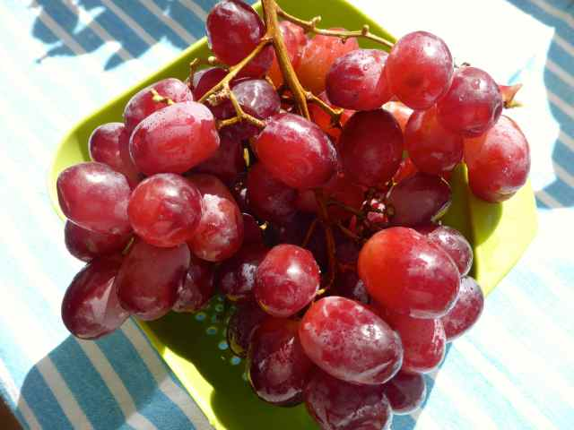 grapes 27-6
