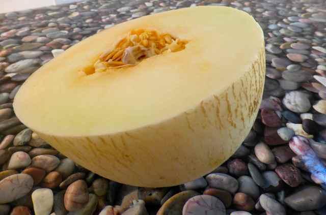 Portuguese melon