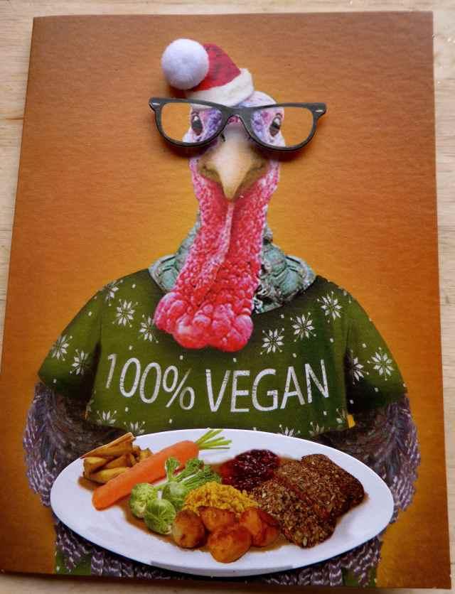 100% vegan