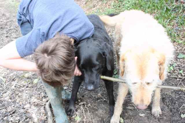 3 boys, 1 stick