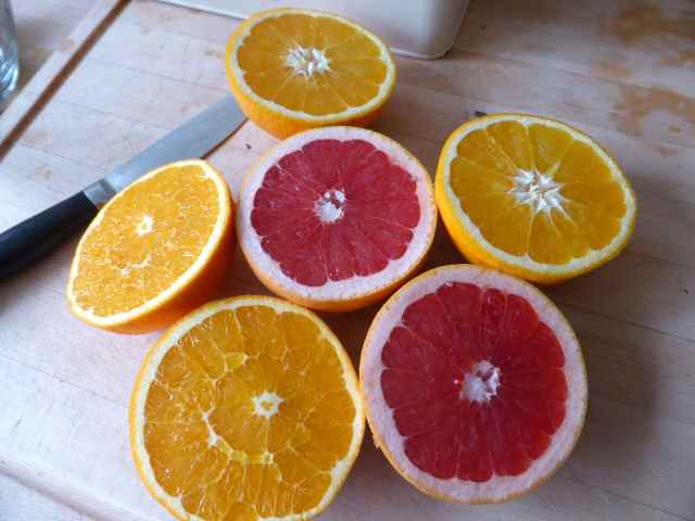 citrus for juicing