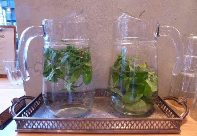 mint in water